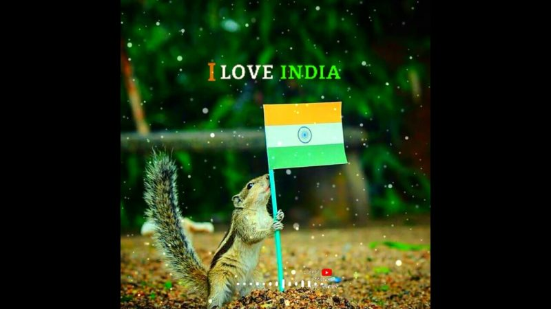 Best Independence day status for whatsapp in 2020| New independence day status