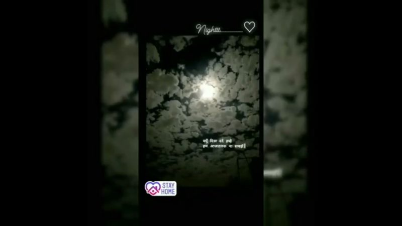 Best good night status for friends in free download for whatsapp status video  15 Sec video download
