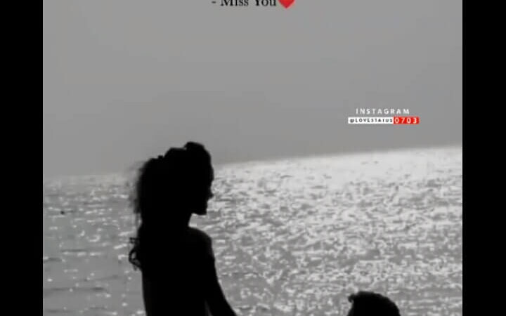Best love status video download mp4